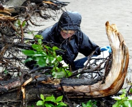 CorkSport Beach Cleanup