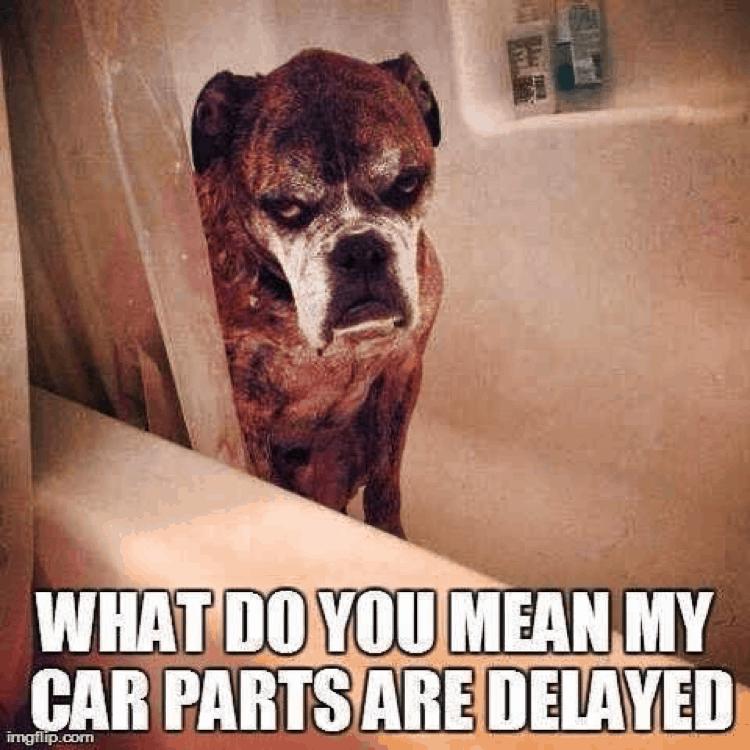 Delayed Car Parts